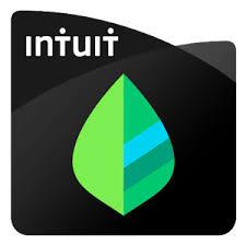Mint - Internet